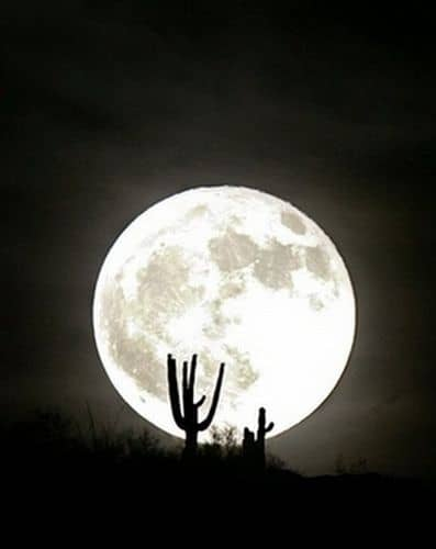 Capricorn Full Moon: Grandfather Moon