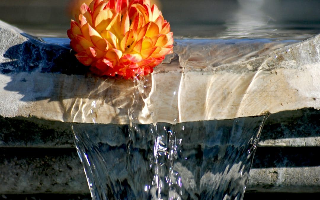 Taurus Full Moon: The Money Fountain