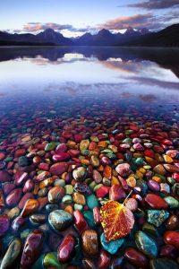 pebble shore lake montana