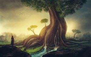 Wisdom Nature