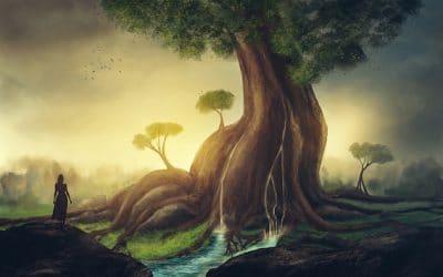 Capricorn Full Moon: Wisdom Nature