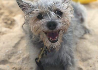 Magnus at beach